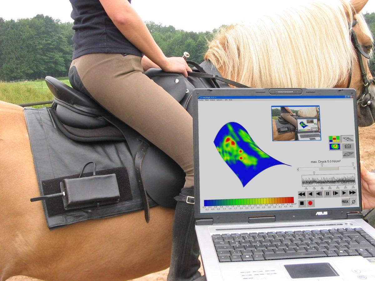 Satteldruckmessung auf dem Pferderücken